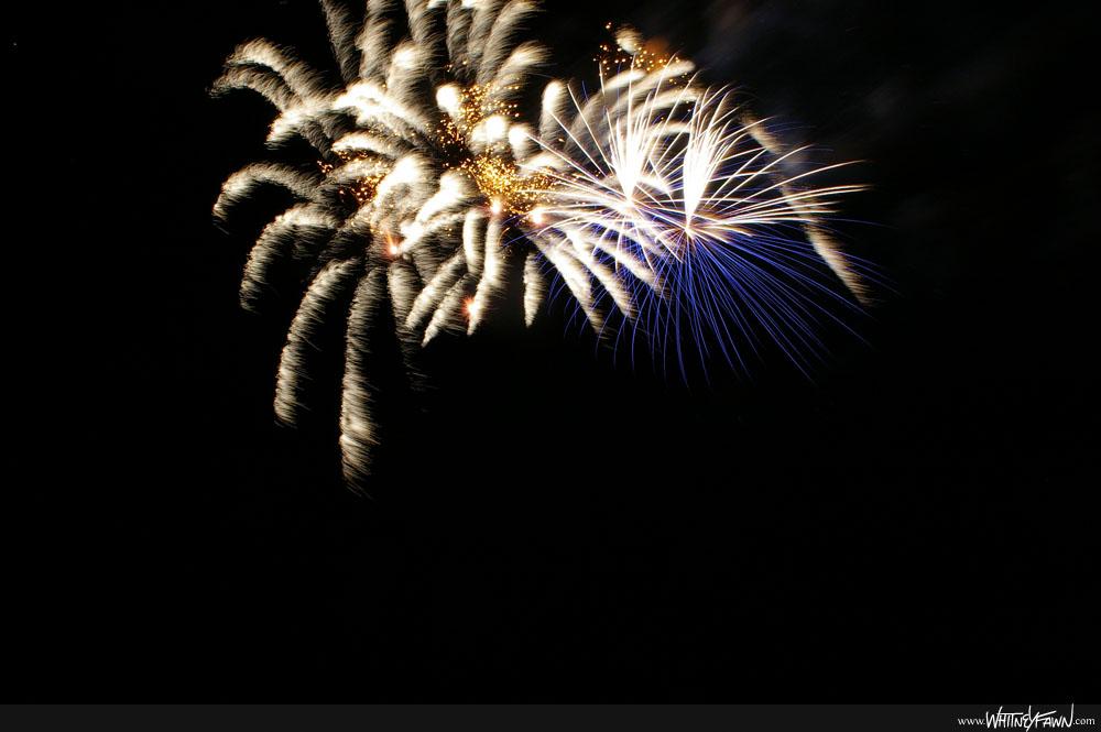Fireworks_Sydney-20130811-02