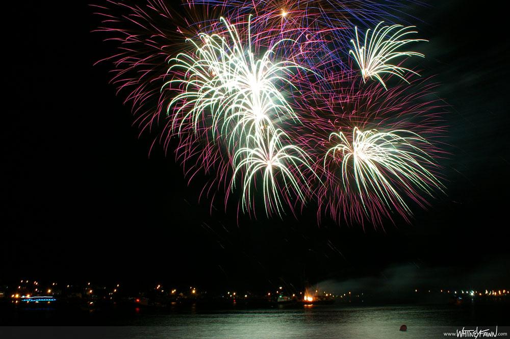 Fireworks_Sydney-20130811-03