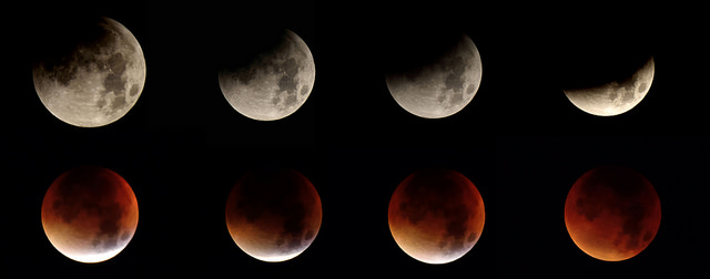 Super Moon Eclipse 2015 photo by Tom Lee