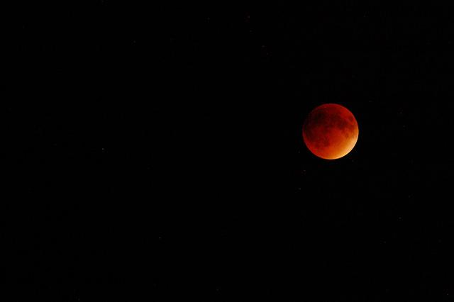 Lunar Eclipse 2015 photo by Penny Higgins