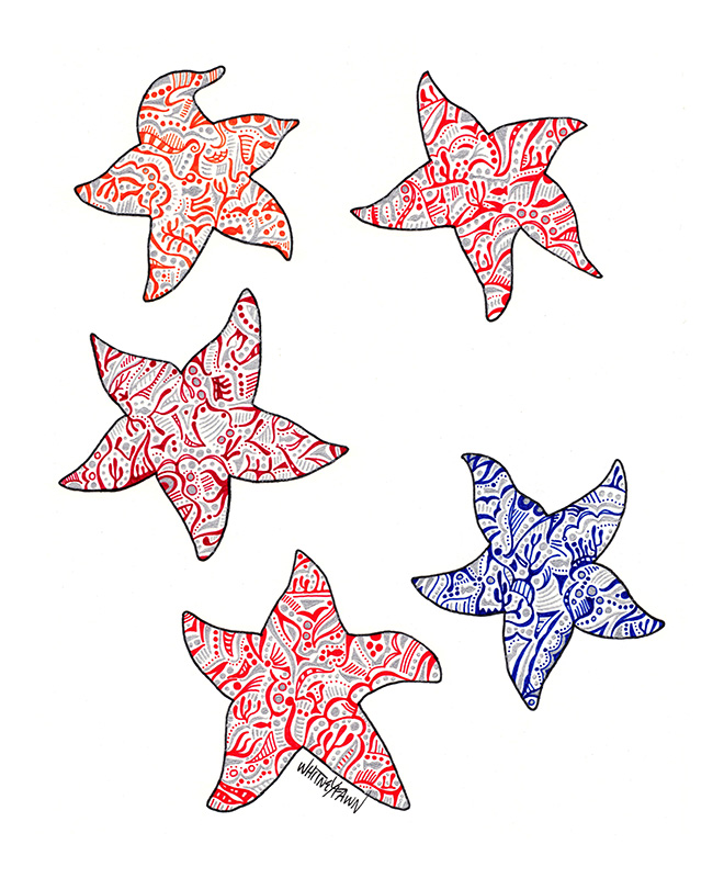5 Starfish by Whitney Fawn MacEachern