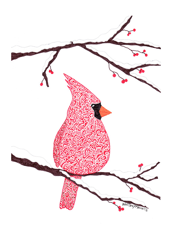 Anna's Cardinal by Whitney Fawn MacEachern