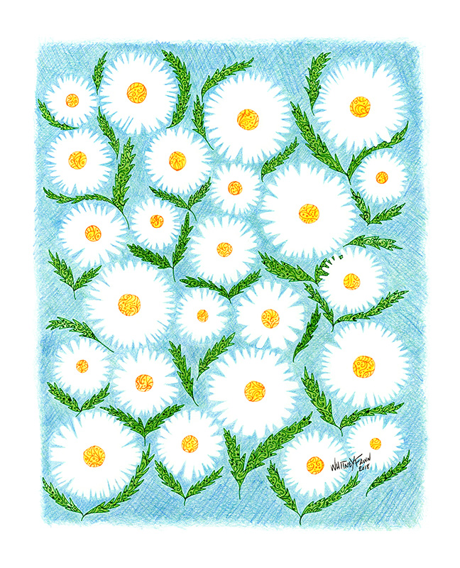 Daisies on Blue by Whitney Fawn MacEachern