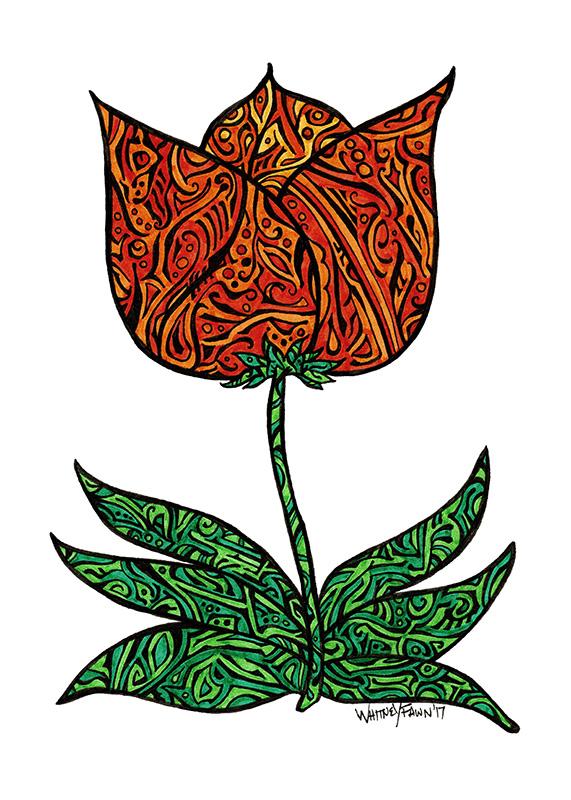 Fanciful Tulip by Whitney Fawn MacEachern
