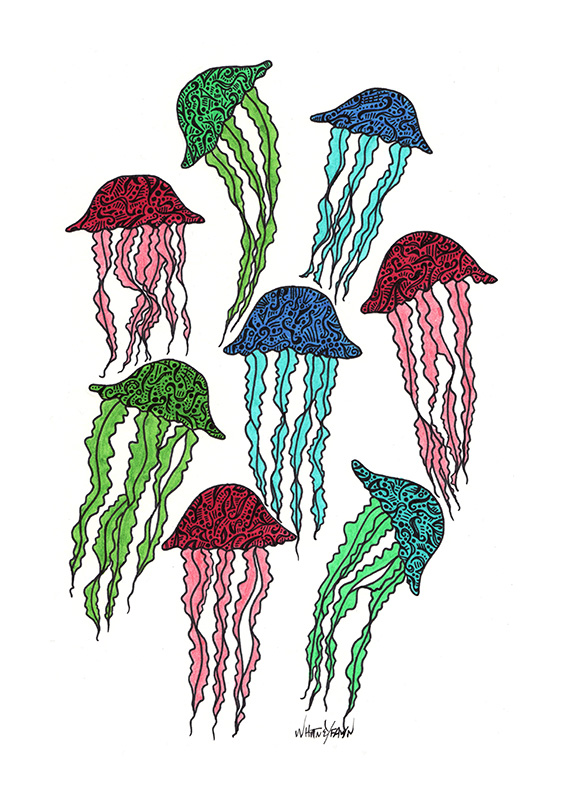 Jellies Too by Whitney Fawn MacEachern