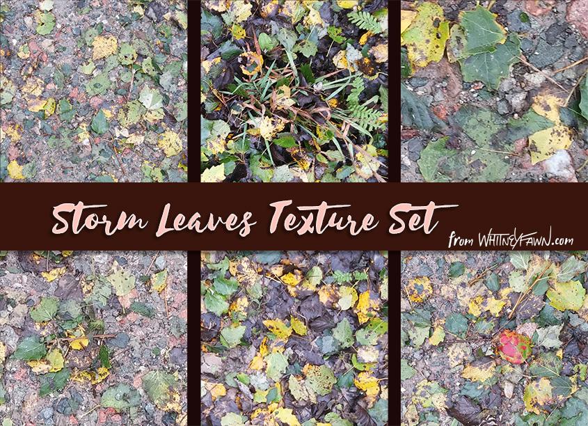 Storm Leaves Texture Set