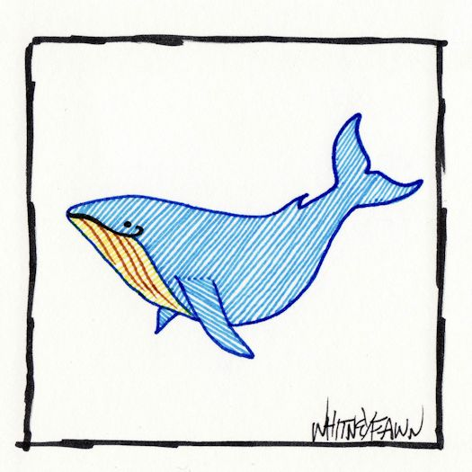 Day 26 - Blue Whale