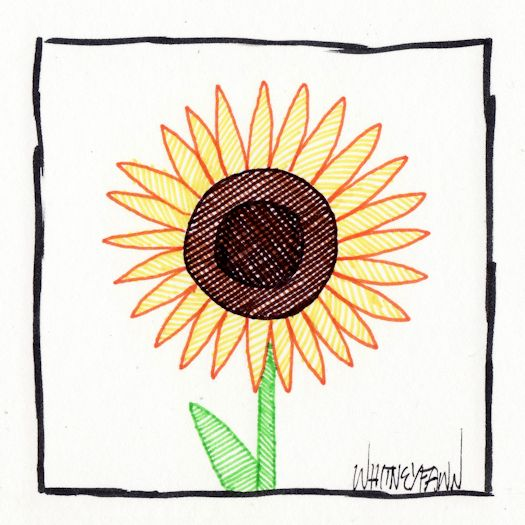 Day 28 - Sunflower