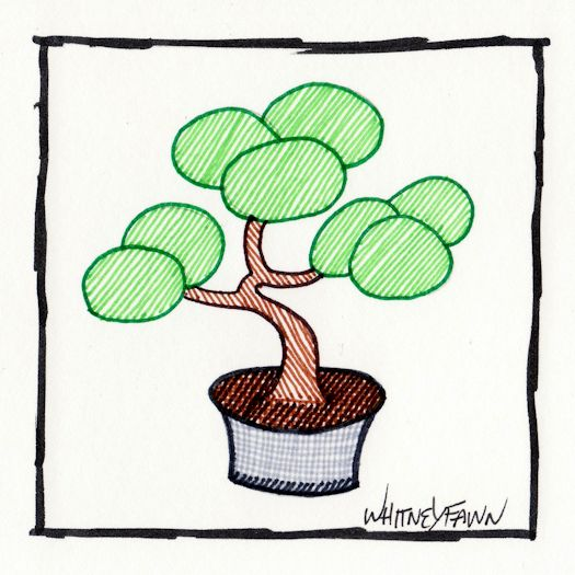 Day 8 - Bonsai