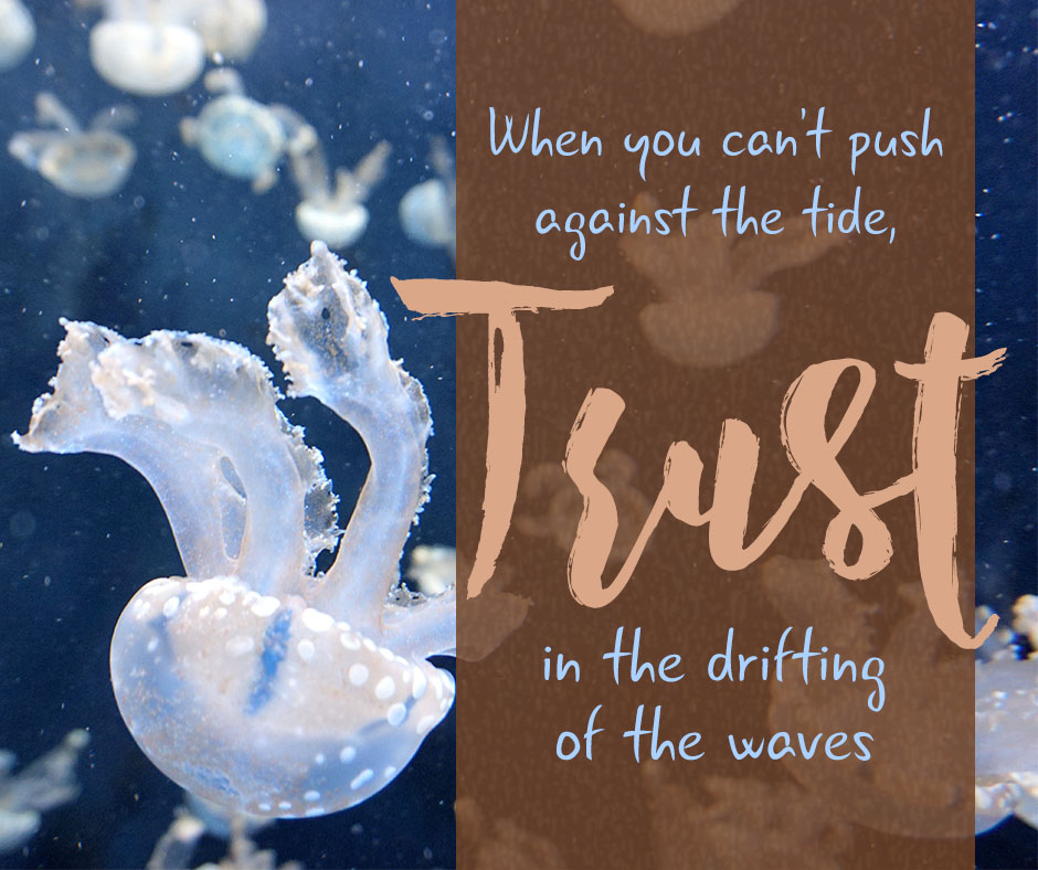 When you can't push against the tide, trust in the drifting of the waves.
